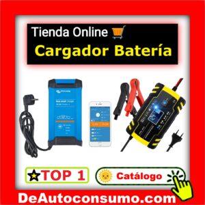 Cargador de Baterías 12v 24v Tradicional Inteligente